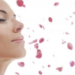 Moisturizing and regenerative procedure for dry and sensitive skin (60 min)
